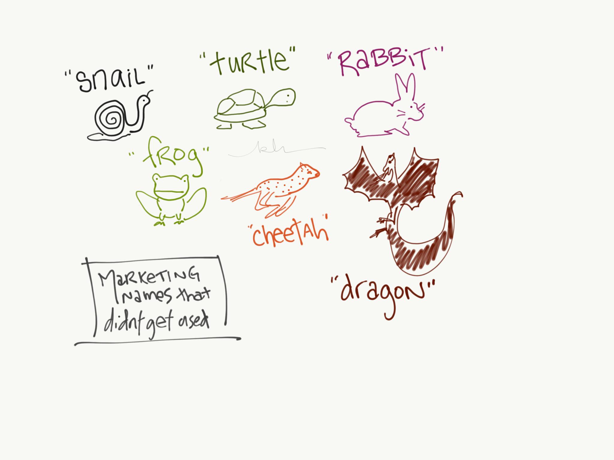 Brainstorm all your ideas